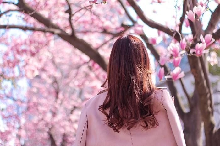 30代女性の花見